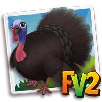 turkey adult spanishblack 200